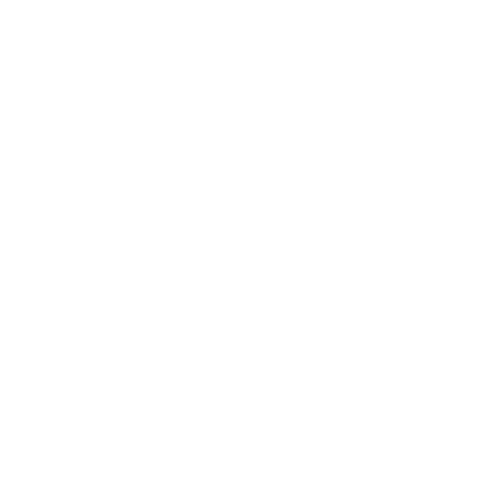 Bar Circus agencement inox